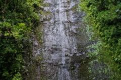 hawaii-manoa_falls-10
