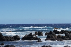hawaii-day-4 (13 of 45)
