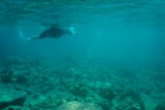 hawaii-day-5 (31 of 49)