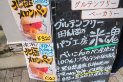 jp_2017__tg-22